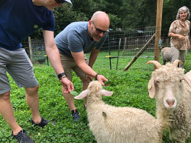 Cuddly creatures are part of the fun on ASAP's Farm Tour.