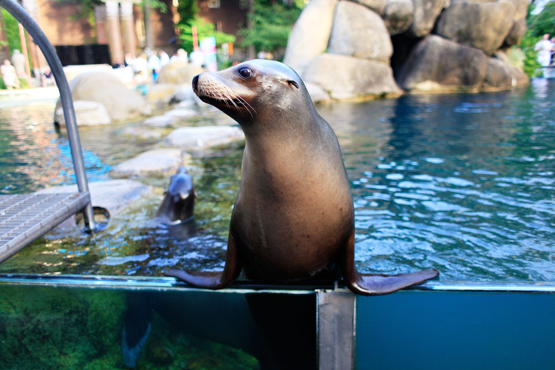 10 places we wouldn't have without the New Deal: Central Park Zoo, San Antonio River Walk