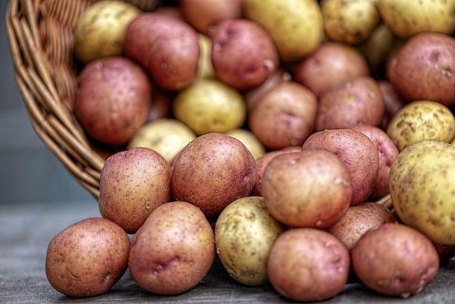 Potatoes provide several important nutrients, including potassium, complex carbohydrates, vitamin C and fiber.