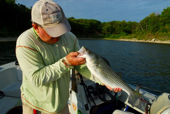 For Texoma fishing guides like Bill Carey and Steve Hollensed (shown above), few things bring more smiles than a big topwater bite from a good sized Texoma striped bass. As the unusual run of reasonable summertime weather continues across the area, reports continue to show success
