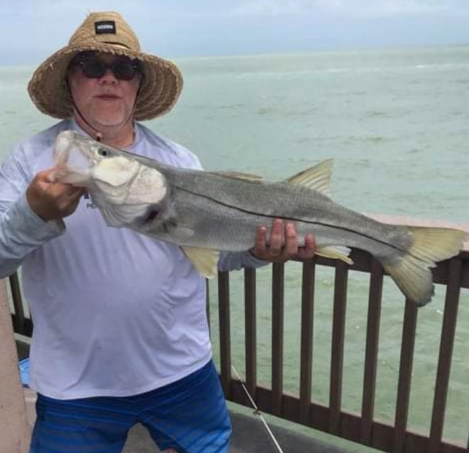 Rick Russo of Naperville, Illinois, caught this 35-inch snook on a live pinfish while fishing at Big Pier 60 this past weekend.