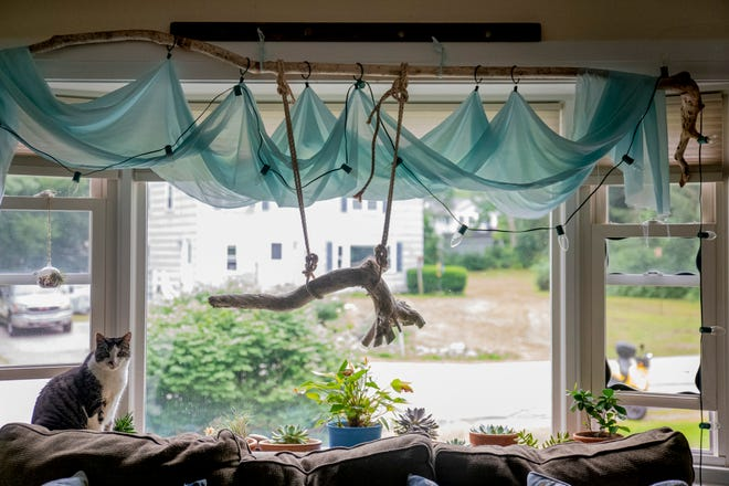 Cherie Herne decorates her home with the art that she creates made of driftwood and sea glass.
