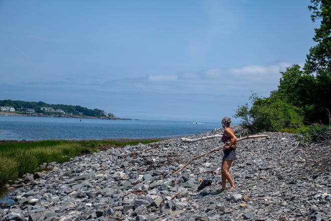 Cherie Herne, owner of Salty Girl,  collects driftwood on York River near the Harbor on Thursday, July 15, 2021.