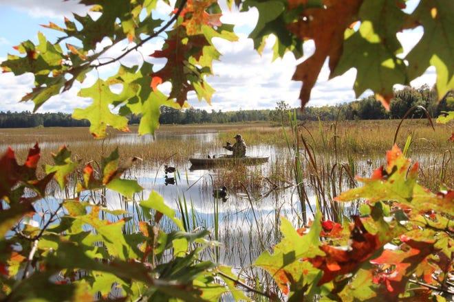 Waterfowl hunting begins in late October
