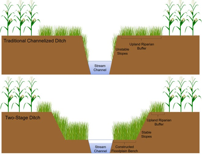 This graphic shows the difference between a traditional channelized ditch and a two-stage ditch.