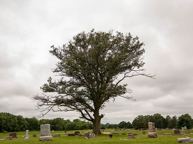 Pictured is Galesburg's East Linwood Cemetery. Galesburg's City Council will weigh an ordinance Monday that would establish official hours for Linwood and East Linwood Cemetery, and for the scatteringgardens.
