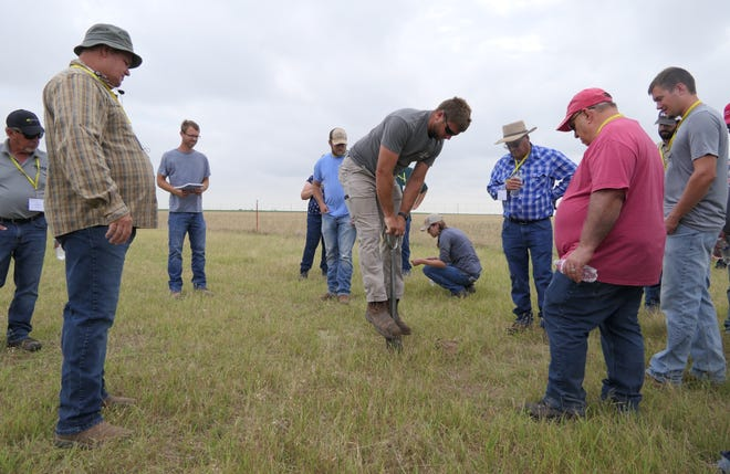 Jordan Koehn of Sublette digs into the dirt on Nick Vos' farm during a No-Till on the Plains event.