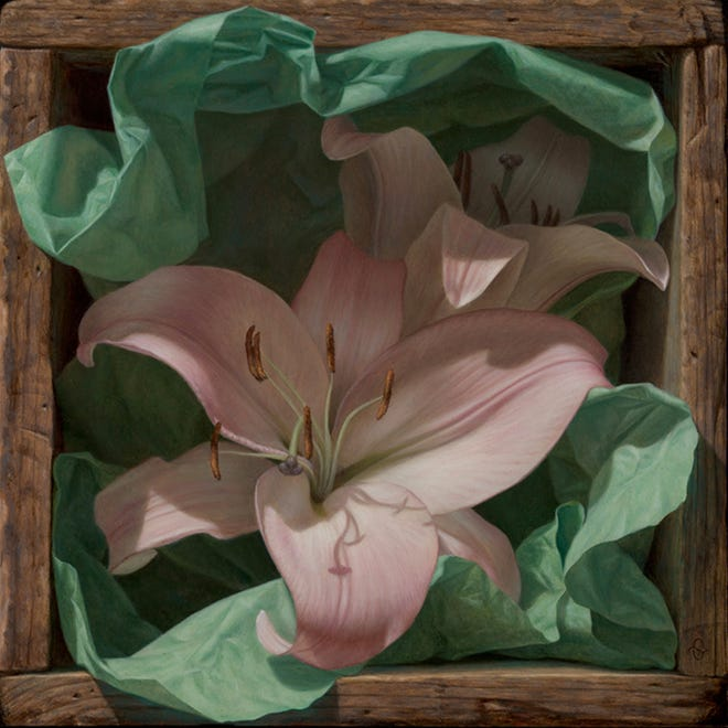 Boxed Lillies by Sean Beavers