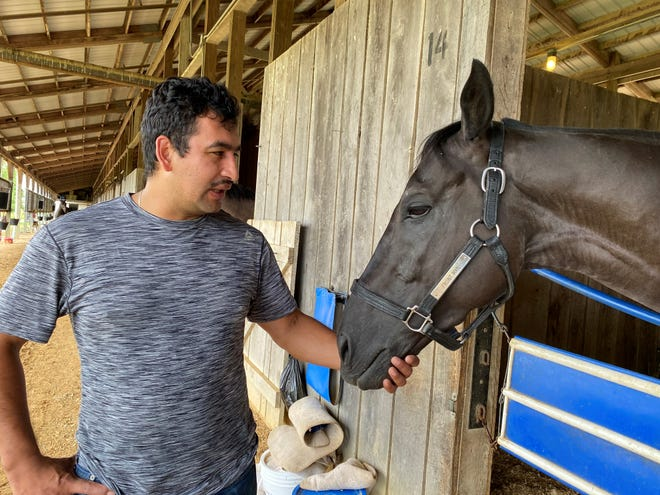 Lamartine, a 6-year-old gelding, will run in Saturday's Good Lord Stakes at Ellis Park and is shown with trainer Juan Cano. Lamartine is owned by a group that includes former University of Southern Indiana women's basketball coach Chancellor Dugan.