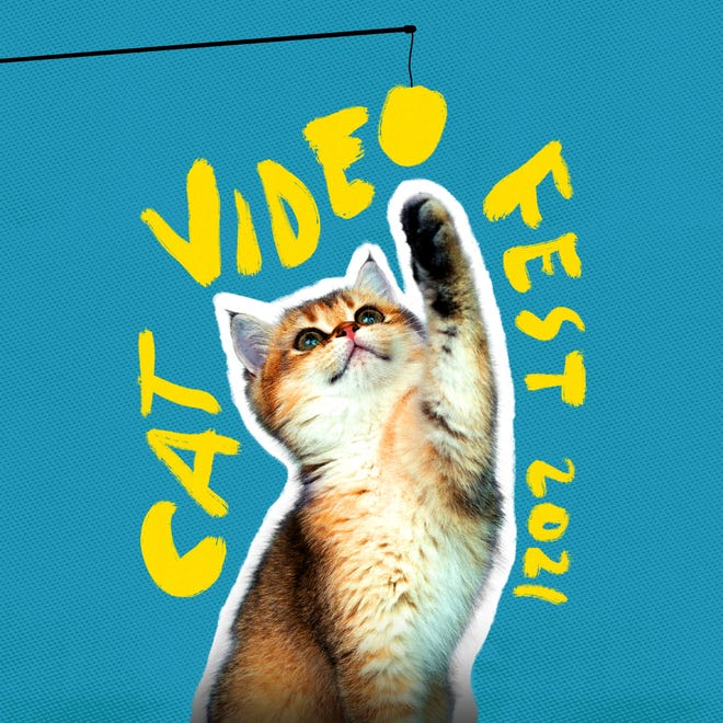 """""""CatVideoFest"""" will screen at the Gateway Film Center starting Friday."""