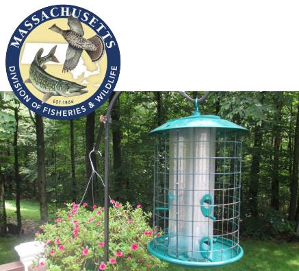 The Mass. Division of Fisheries and Wildlife has issued a warning, asking homeowners to take down bird feeders as a preventative measure against a mystery illness killing birds in other areas of the country.