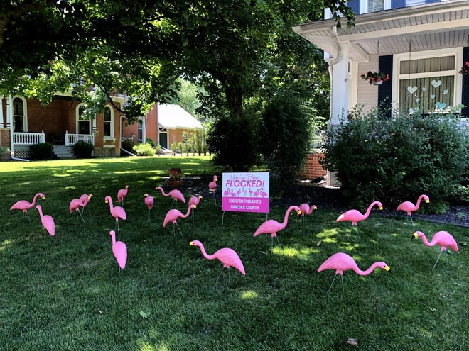 Food for Thoughts Hancock County, Illinois, has flocked a house. Residents who find the pink flamingos in their yard can give a donation to the program that feeds hungry children during the school year. Crews then remove the lawn ornaments and take them to another spot.