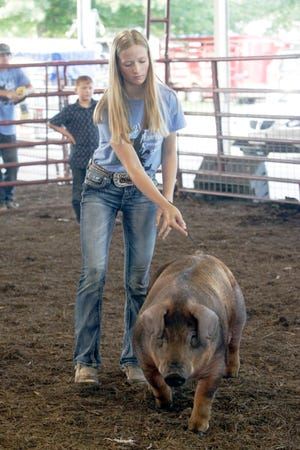 Alicen Mitchell of Higbee escorts  her 7-month old, 269-pound pig Mack into the Riley Pavilion arena Friday, July 16 to be looked at by more than 400 persons during 2021 Randolph County 4-H/FFA Fair Blue Ribbon Auction. Mack was named Grand Champion Market Hog and was purchased for $1,000 by Mid-Am Building Supply of Moberly.
