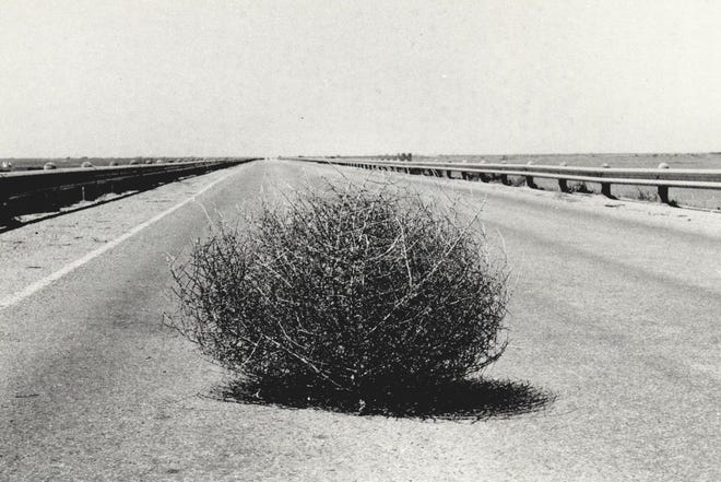A lone tumbleweed pauses in the middle of a road before rambling on across the Oklahoma landscape.