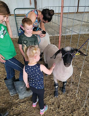Reagan Blasi (left) introduces her younger cousins to her 4-H project sheep that she will be showing this week at the Pratt County Fair.