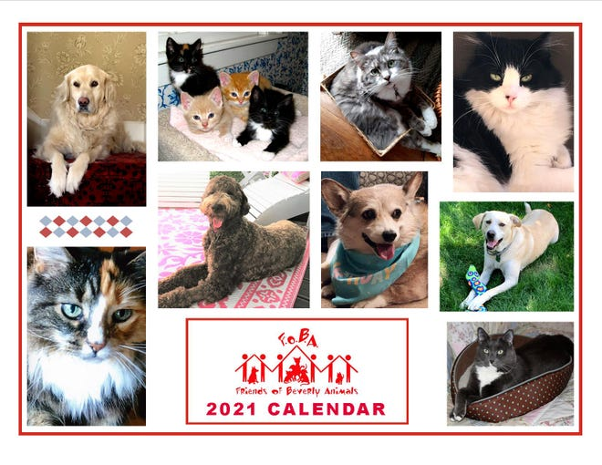2021 Calendar.