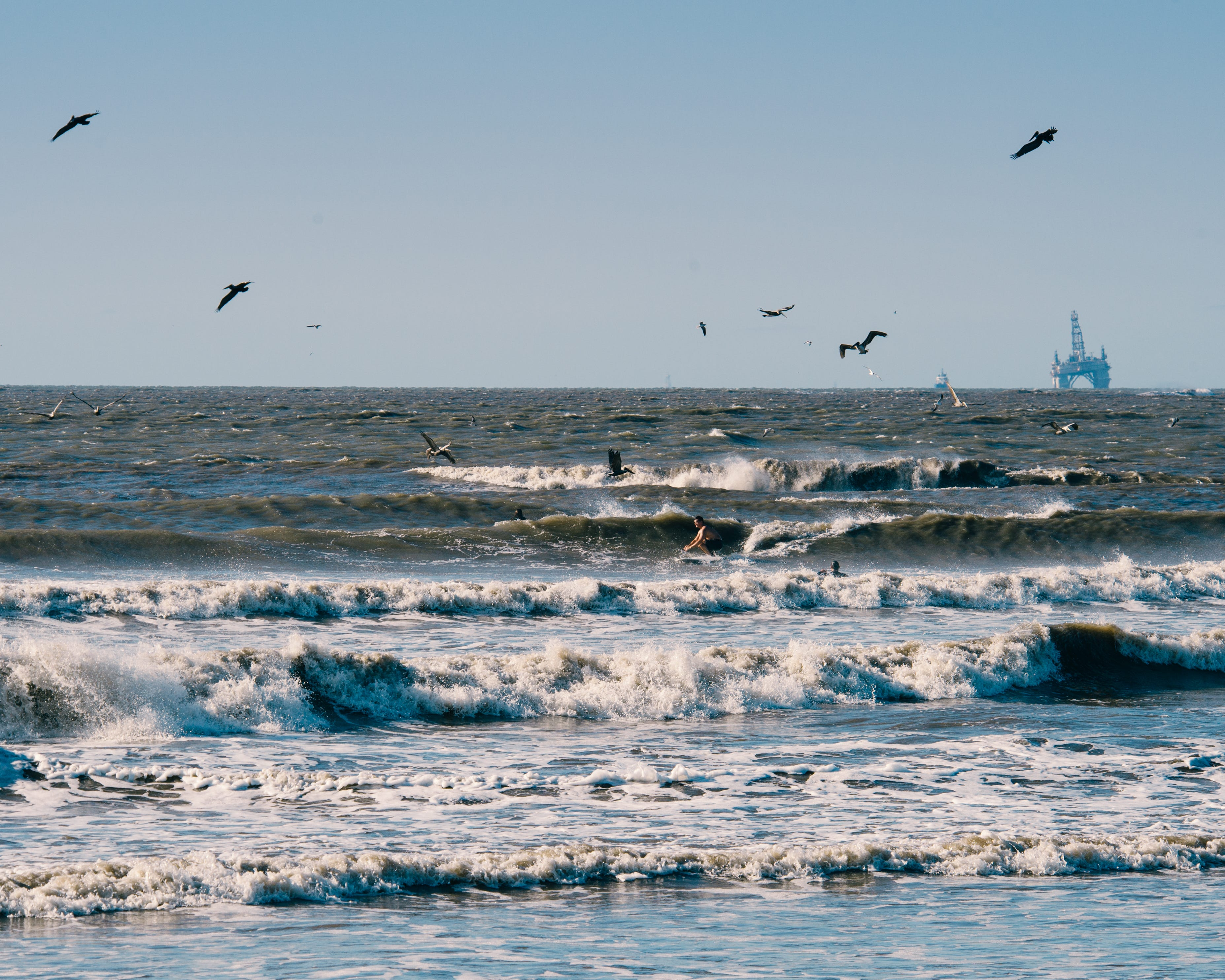 Grand Isle Surf: pelicans fly overhead as a surfer finds a ride between the white wash and an oil rig looms in the background