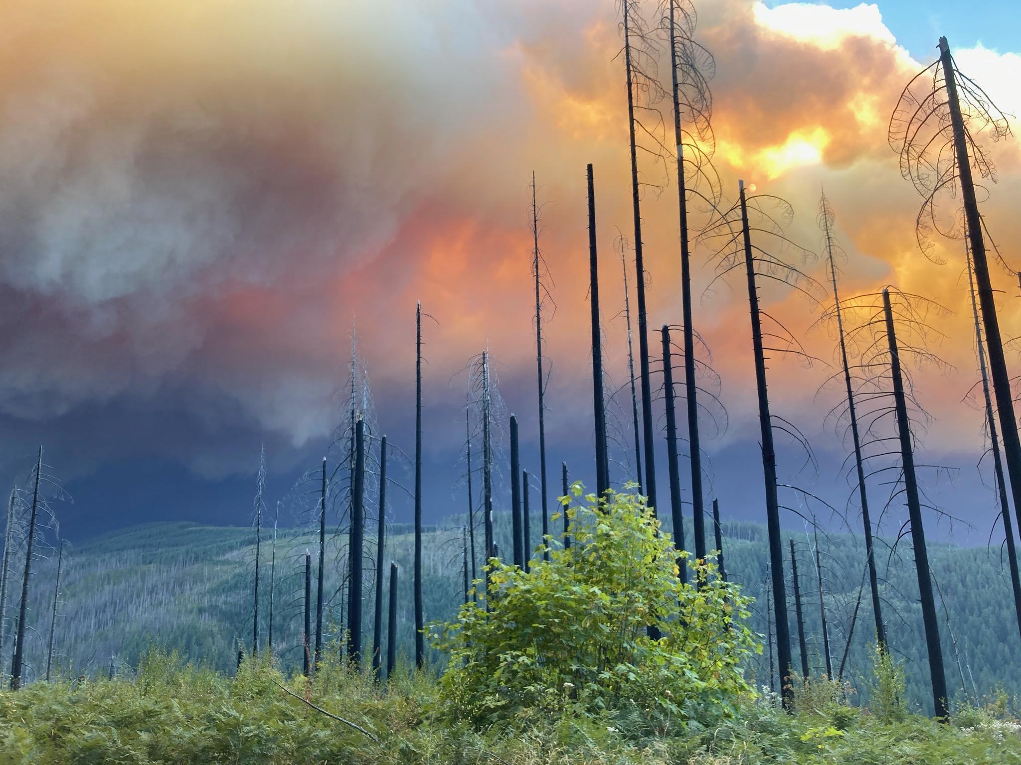 Riverside Fire from La Dee Flats in September 2020.