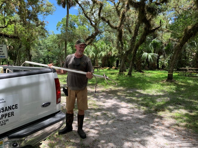 Alligator trapper John Davidson responded to Halpatiokee Park on Monday, July 19, 2021, where he captured an 8-foot female alligator that attacked a man who had fallen from his bike.