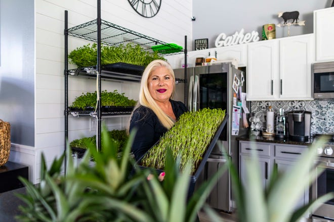 Marianne Kontof, the owner of Sunny Greens, a business that specializes in the growth, delivery and education of microgreens, tends to her vegetables on Friday, July 16, 2021, at her home in Port St. Lucie. Kontof sells the microgreens online and at local farmer's markets in Port St. Lucie, Fort Pierce and Hobe Sound.