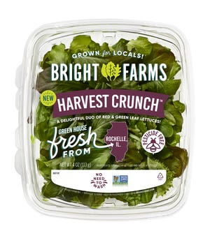BrightFarms today initiated a voluntary recall of packaged salad greens produced in its Rochelle, Illinois (Ogle County) greenhouse farm sold in Illinois, Wisconsin, Iowa and Indiana because it has the potential to be contaminated with Salmonella.