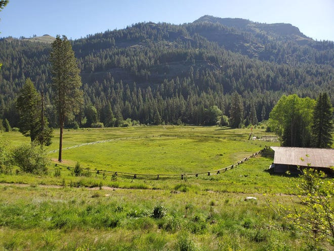 The Eagle Cap Wilderness is an idyllic setting for dogs.