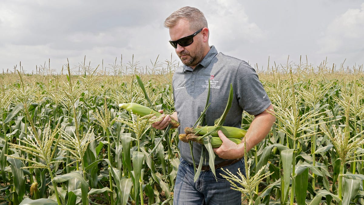 Farmers make progress in improving water quality, but much work remains