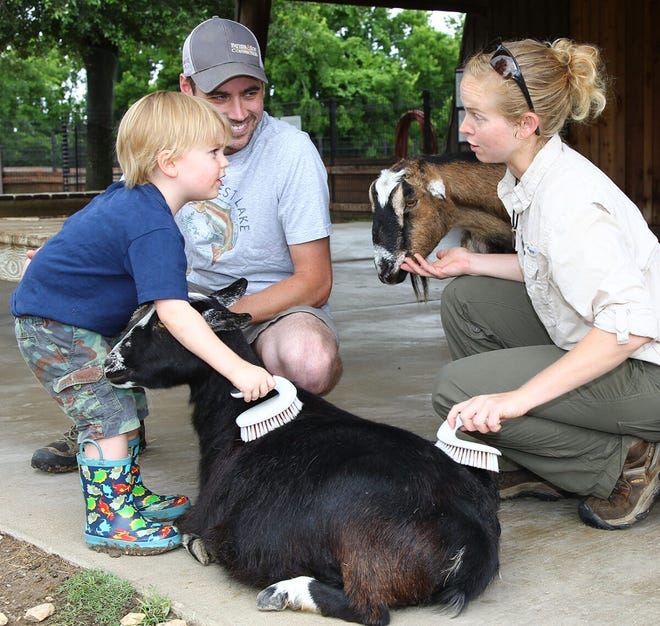 The Children's Animal Center at Fossil Rim Wildlife Center is open once again. The CAC is always free to visit at the Overlook. It will be open daily from 10 a.m. to 4:30 p.m. Please do not bring food or drinks to the CAC and do not try to feed the animals there.