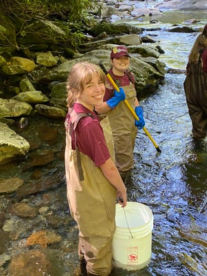 Great Smoky Mountains National Park interns Kaylie Hallcox and Morgan Kirkpatrick spent time monitoring fish populations this summer. They were supporting fisheries technicians who had stunned the fish, following them with nets and buckets to collect fish for identification, counting, weighing, and measuring.