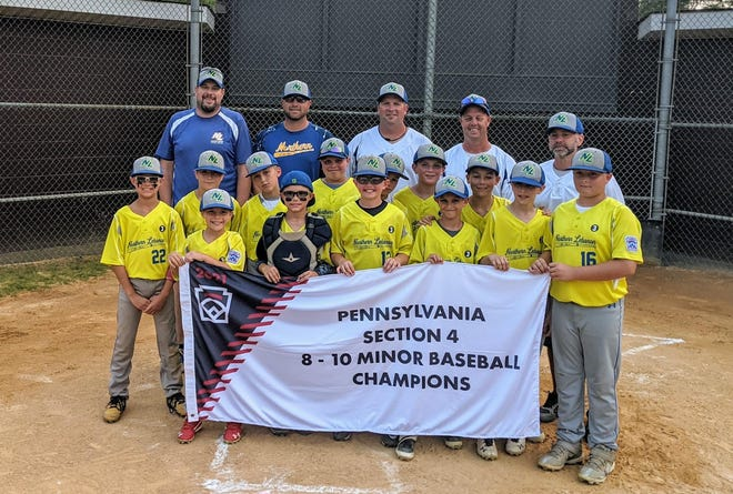 The Northern Lebanon International 10U all-star baseball team poses with the championship banner after winning the Pennsylvania Section 4 title on Tuesday night.
