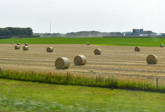 Hay bales rest in a field on Tuesday, July 20, 2021 in eastern South Dakota.