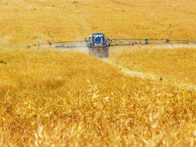 University of Missouri Extension will offer two training options for farmers who wish to renew or obtain their private pesticide applicator license.
