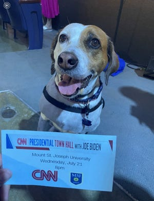 Wonder, the 5-year-old service dog, who made a cameo on the CNN's Mount Saint Joseph University town hall with President Joe Biden on July 21, 2021.