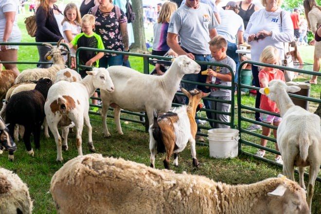 Ellie Rosche, 4, right, and Hunter Mordan, 5, feed the animals at the petting zoo on Family Night during Boat Week Thursday, July 22, 2021, in Port Huron.