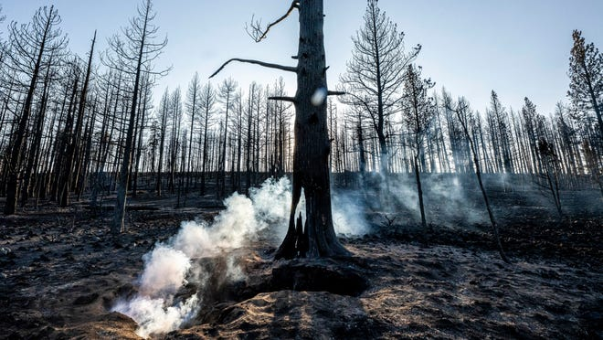 Tamarack Fire spreads in Nevada;  Bootleg Fire almost third-party content