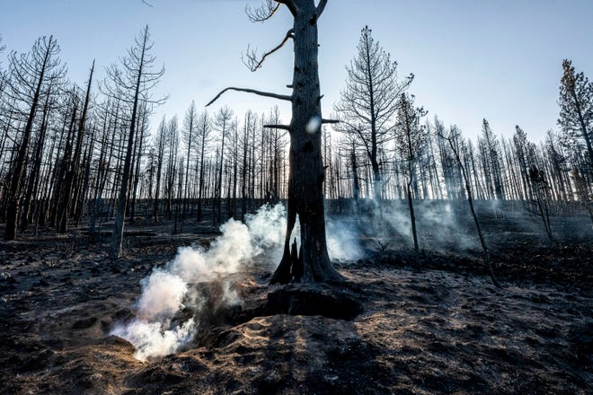 Spot fires smolder near trees damaged by the Bootleg Fire on Wednesday, July 21, 2021 in Bly, Ore.