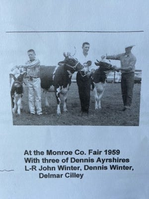 Showing three Ayrshire calves owned by Dennis A. Winter at the 1959 Monroe County Fair were (from left) John Winter, Dennis and Delmer Cilley.