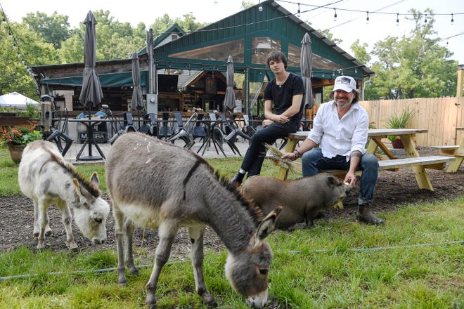 Mark Henegan, right, chef and co-owner of The Bush Farmhouse, with his son, Skyler, miniature donkeys Jane and Meg, and Candy the pig in Black Mountain, July 21, 2021.