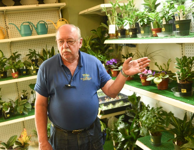 Tom Woods, owner of Woods Farmer Seed and Nursery, speaks about tips for houseplant care Thursday, July 22, 2021, in Waite Park.