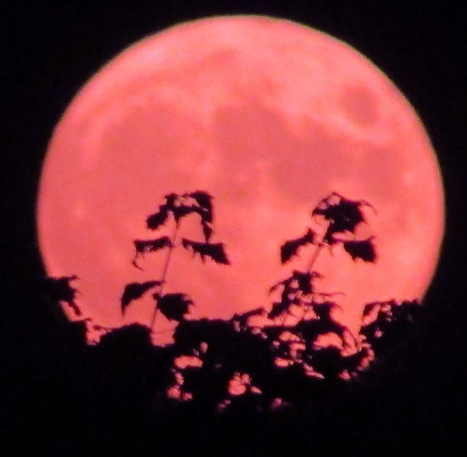 Full buck moon rising in the southeast July 23, 2021.