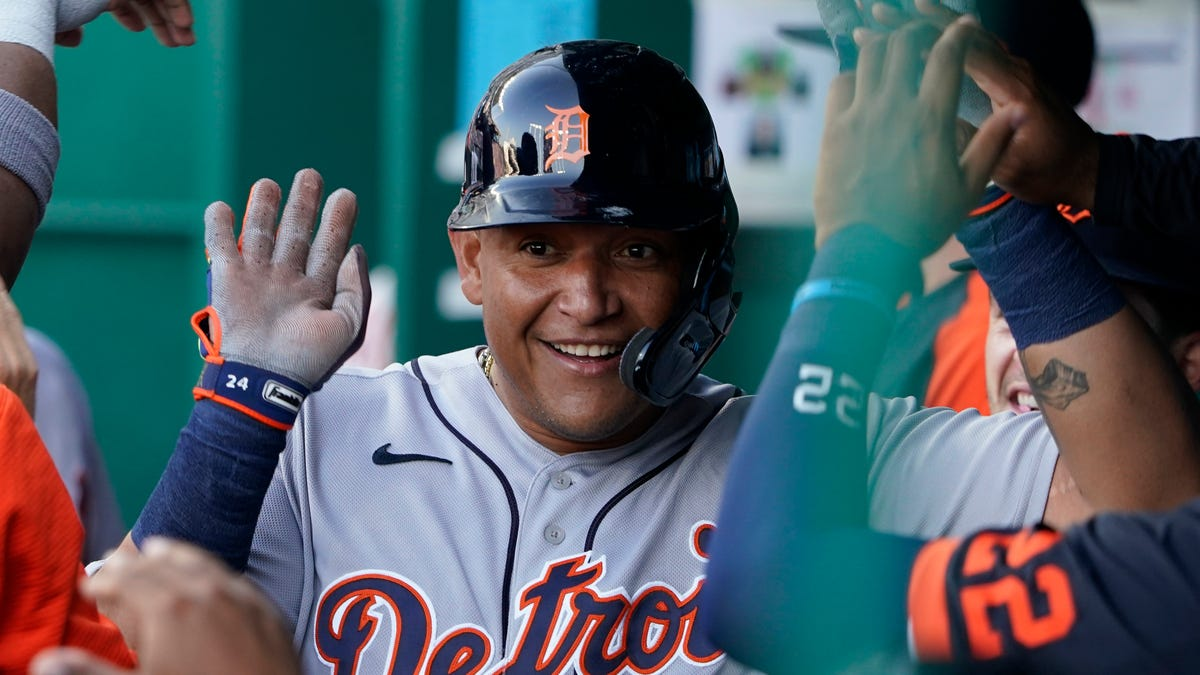 Detroit Tigers Newsletter: 101 games in, it's time to see the forest, not the trees