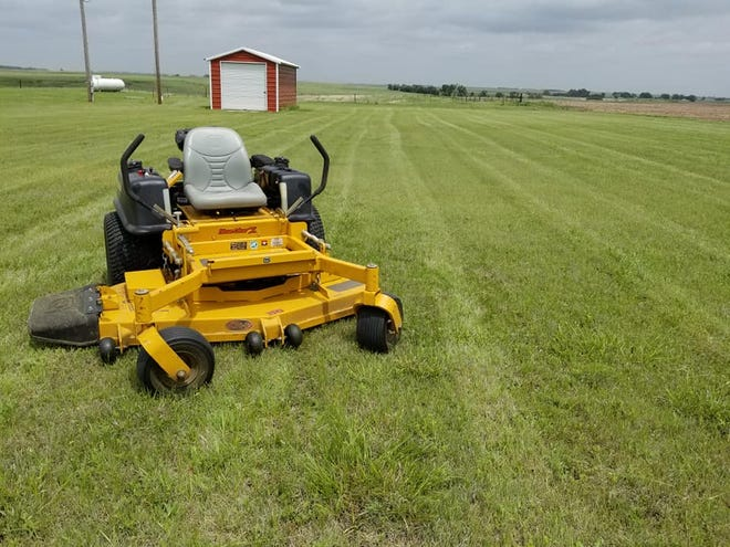 Summer time heat brings concerns about when and how much to water lawns, and good mowing plans.