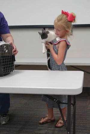 Brecken Wilson shares her cat, Mr. Whiskers, with the public at the 2021 Pratt County Fair 4-H hand pet show, held this year at the Pratt Public Library.