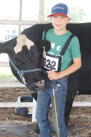 Weston Hoeme enjoyed the beef show at the Pratt County Fair this year as he brought back an old friend, Mr. Whiskers, who was his bucket calf two years ago at the same fair.