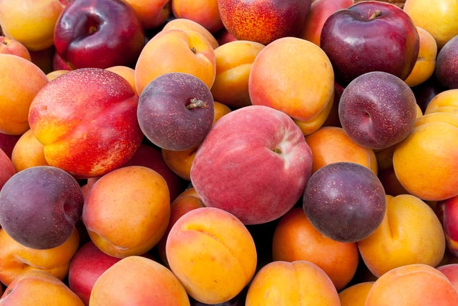 The months of July and August are a great time to enjoy stone fruit such as peaches, nectarines, apricots and plums.