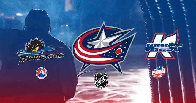 The Kalamazoo Wings announced new affiliates.