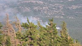 Crews stop forward progress on Valley Fire burning in Dog Valley