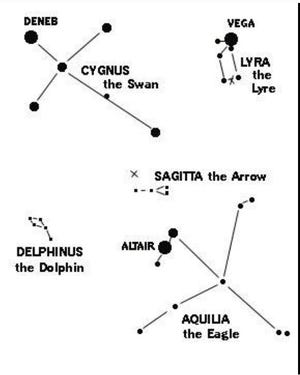 """Cygnus the Swan is at upper left in this chart. Look high in the east on early August evenings. On the opposite end of the Swan's """"Northern Cross' shape from Deneb, is the star Albiero, a beautiful double star in a small telescope."""