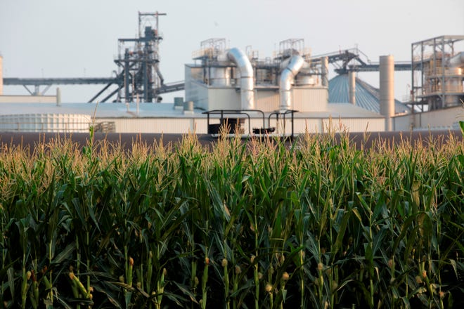 Project developers plan to build carbon capture pipelines connecting dozens of Midwestern ethanol refineries, such as this one in Chancellor, South Dakota, shown on Thursday, July 22, 2021. Corn absorbs the greenhouse gas carbon dioxide, but the process of fermenting it into ethanol releases carbon dioxide emissions.