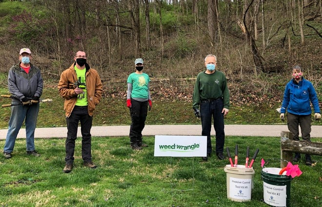 Weed Wrangle volunteers work at area parks to identify, reduce and remove invasive plant species that threaten our native flora. Weed Wrangles happen the first Saturday of every month May-November.
